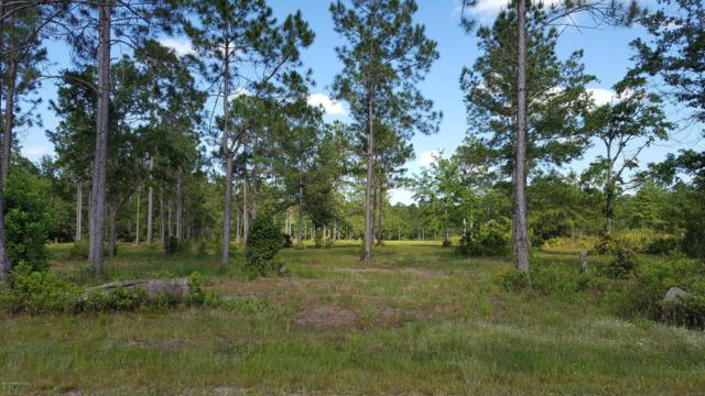 4438 Bondarenko Rd, Keystone Heights, FL 32656 (MLS #934377) :: The Hanley Home Team