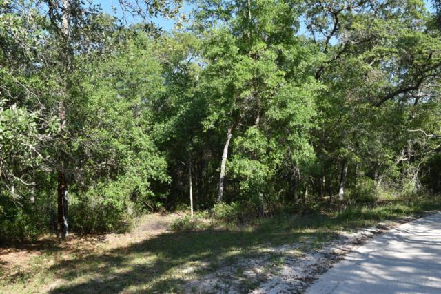 104 Sand Lake Dr, Pomona Park, FL 32181 (MLS #936853) :: 97Park