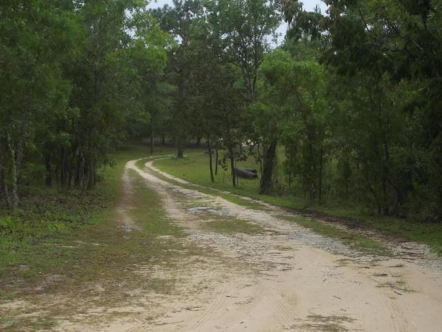 232 Rose Trl, Interlachen, FL 32148 (MLS #936994) :: St. Augustine Realty