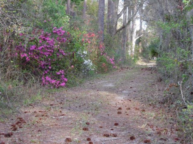 3650 County Road 13, Elkton, FL 32033 (MLS #937322) :: Florida Homes Realty & Mortgage