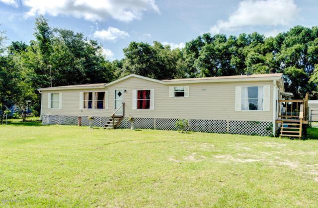 119 Barter Dr, Satsuma, FL 32189 (MLS #938843) :: The Hanley Home Team