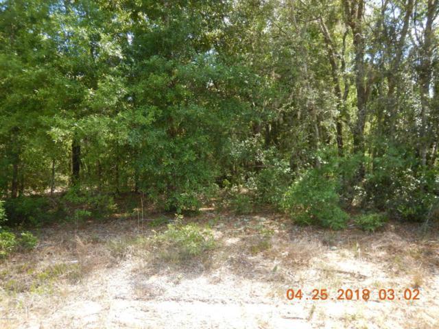 337 3RD Way, Interlachen, FL 32148 (MLS #939030) :: Memory Hopkins Real Estate