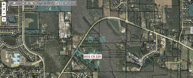 3031 County Road 220, Middleburg, FL 32068 (MLS #940244) :: EXIT Real Estate Gallery