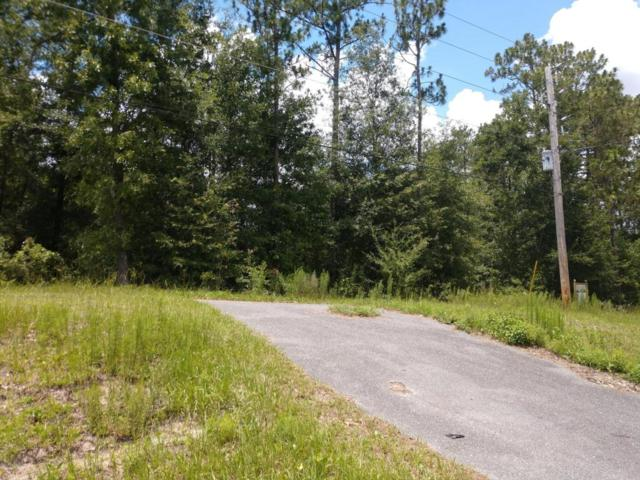 3260 State Road 21, Middleburg, FL 32068 (MLS #942378) :: RE/MAX WaterMarke