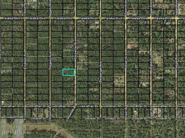 10685 Carpenter Ave, Hastings, FL 32145 (MLS #944012) :: EXIT Real Estate Gallery