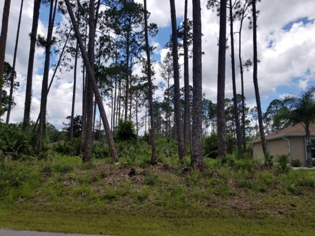 12 Lloshire Path, Palm Coast, FL 32164 (MLS #946573) :: EXIT Real Estate Gallery
