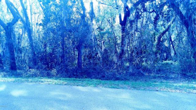 135 W Grandview Dr, East Palatka, FL 32131 (MLS #947275) :: The Hanley Home Team