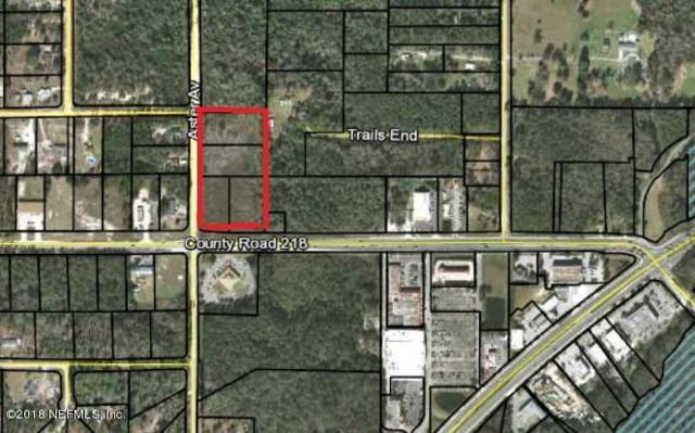 4140 Co Rd 218, Middleburg, FL 32068 (MLS #948375) :: EXIT Real Estate Gallery