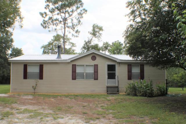 2207 Mallard Rd, Middleburg, FL 32068 (MLS #948481) :: EXIT Real Estate Gallery