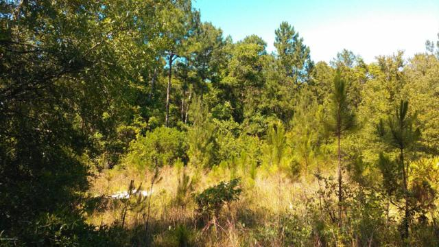 18 Ivy Ct, Middleburg, FL 32068 (MLS #949810) :: CrossView Realty