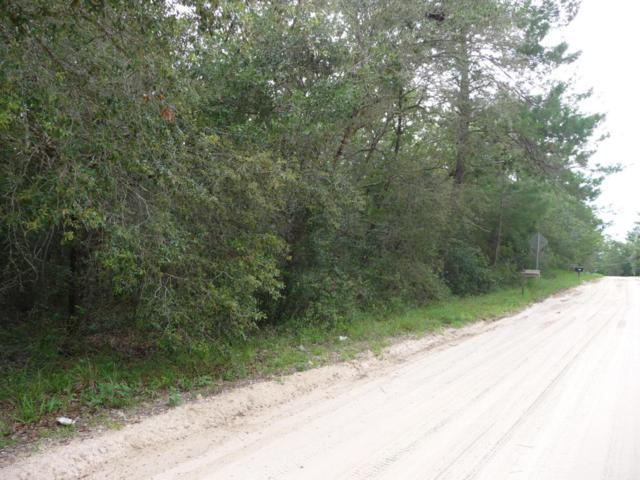 LOT 32 Sand Lake Dr, Pomona Park, FL 32181 (MLS #951058) :: 97Park