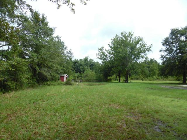 2065 Gentle Breeze Lot 1 Rd, Middleburg, FL 32068 (MLS #951349) :: EXIT Real Estate Gallery