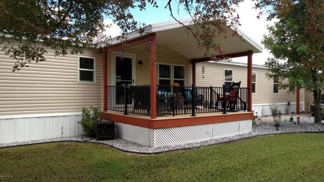 2529 Larkspur Ave, Middleburg, FL 32068 (MLS #951785) :: Memory Hopkins Real Estate