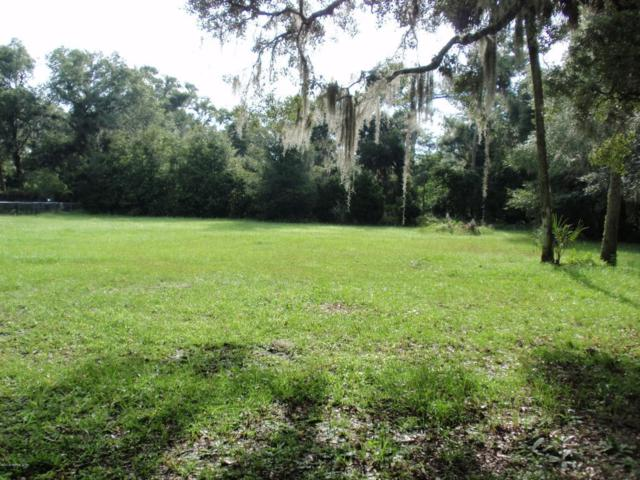 1124 4TH Ave, Welaka, FL 32193 (MLS #952354) :: The Hanley Home Team