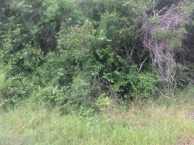 2527 NW County Rd 225, Lawtey, FL 32058 (MLS #952689) :: CrossView Realty
