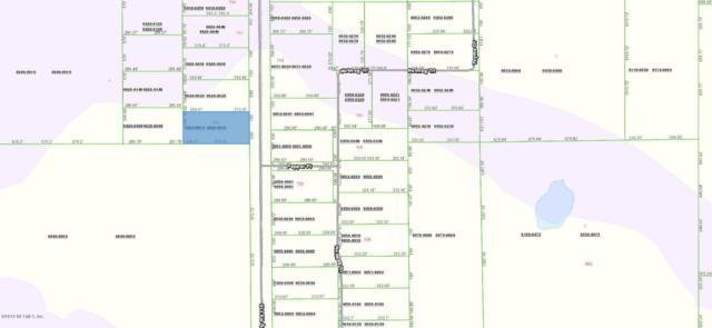 721 County Rd 315, Interlachen, FL 32148 (MLS #953677) :: EXIT Real Estate Gallery