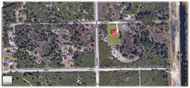 7753 2ND Ter, LA BELLE, FL 33935 (MLS #954279) :: CenterBeam Real Estate