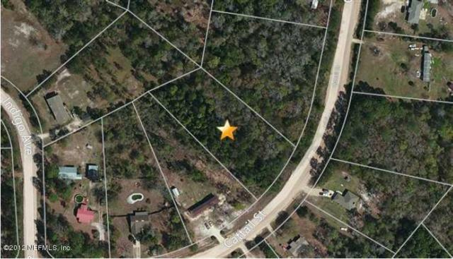 4758 Cattail St, Middleburg, FL 32068 (MLS #955012) :: CenterBeam Real Estate