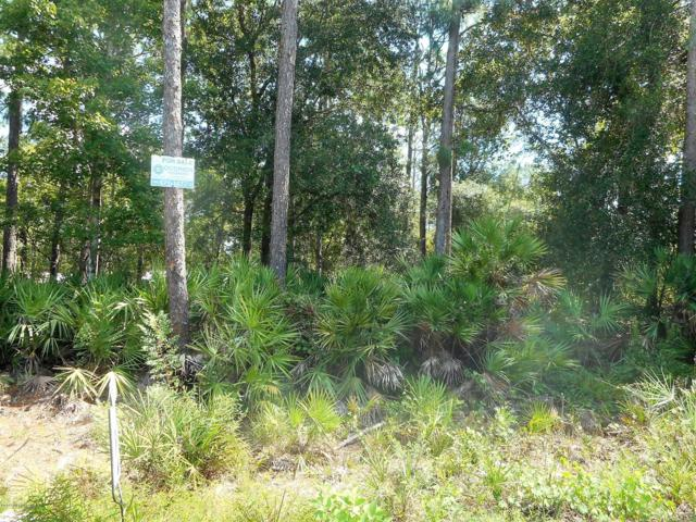224 Horse Landing Rd, Satsuma, FL 32189 (MLS #958780) :: EXIT Real Estate Gallery