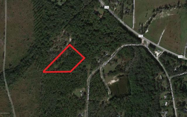 5919 County Rd 218, Middleburg, FL 32234 (MLS #959131) :: Memory Hopkins Real Estate