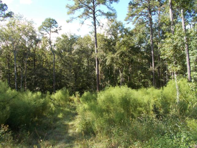 5175 Chicory Cir, Middleburg, FL 32068 (MLS #959164) :: The Hanley Home Team