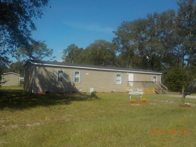 10352 Andrew Raulerson Rd, Glen St. Mary, FL 32040 (MLS #959482) :: EXIT Real Estate Gallery