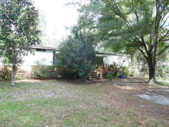 4852 Fireweed St, Middleburg, FL 32068 (MLS #961913) :: Sieva Realty