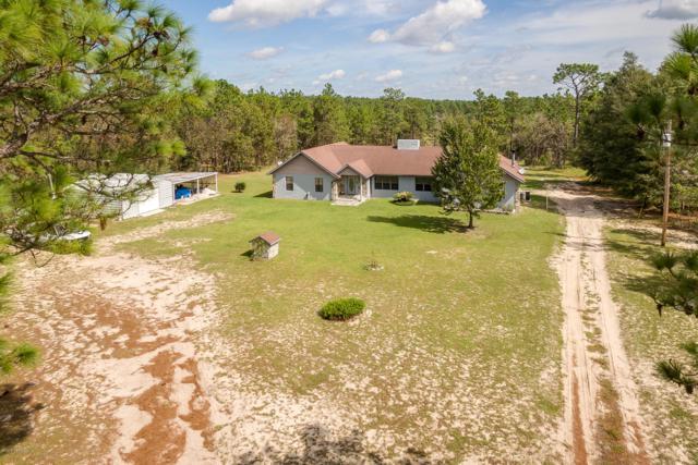 124 Whirlwind Loop, Hawthorne, FL 32640 (MLS #962039) :: Ancient City Real Estate