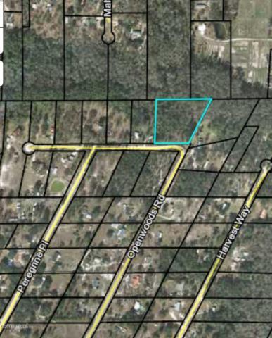 1891 Openwoods Rd, Middleburg, FL 32068 (MLS #962204) :: Ponte Vedra Club Realty   Kathleen Floryan