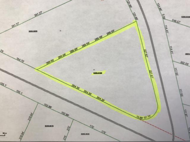 103 Orange Tree Rd, East Palatka, FL 32131 (MLS #962723) :: The Hanley Home Team