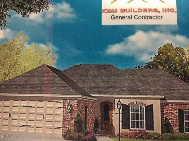 4669 Gopher St, Middleburg, FL 32068 (MLS #962930) :: The Hanley Home Team