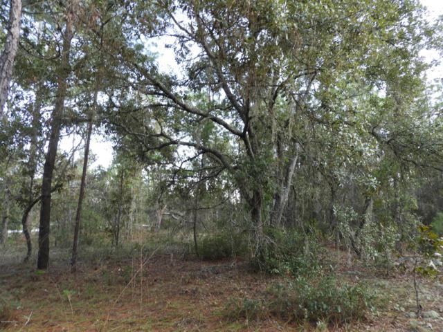 7464 Bienville Ave, Keystone Heights, FL 32656 (MLS #964668) :: The Hanley Home Team