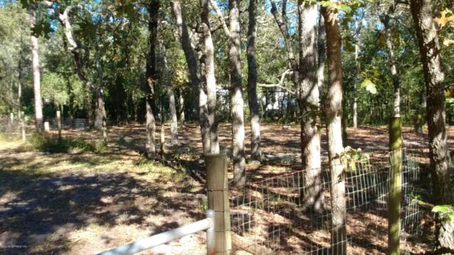 223 Dolphin Cir, Middleburg, FL 32068 (MLS #966322) :: CrossView Realty
