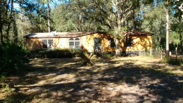223 Dolphin Cir, Middleburg, FL 32068 (MLS #966323) :: CrossView Realty