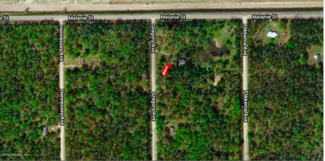 10020 Gregory Ave, Hastings, FL 32145 (MLS #966597) :: The Hanley Home Team