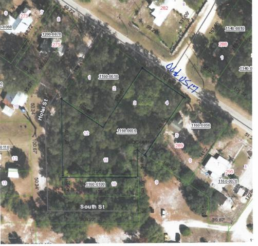 285 Old Highway 17, Crescent City, FL 32112 (MLS #968123) :: Oceanic Properties