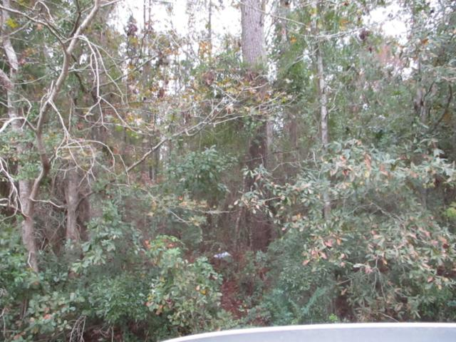 0 Wagner Rd, Jacksonville, FL 32219 (MLS #969948) :: The Hanley Home Team