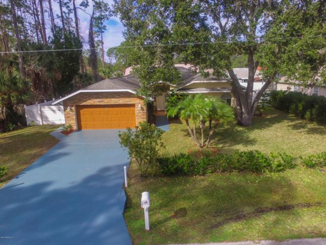53 Briarvue Ln, Palm Coast, FL 32137 (MLS #973559) :: The Hanley Home Team