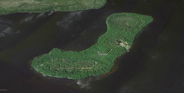 178 Hog Island Dr, Georgetown, FL 32139 (MLS #973850) :: Florida Homes Realty & Mortgage