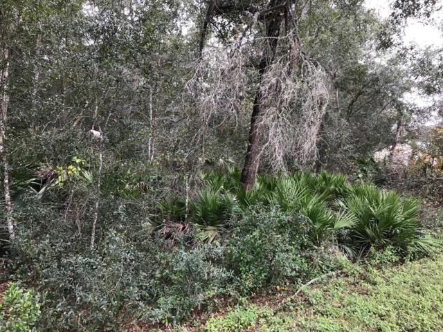 00 Old Hwy 17, Crescent City, FL 32112 (MLS #974944) :: Oceanic Properties