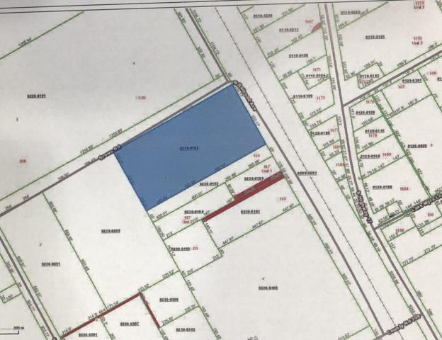0 Brown Rd, Satsuma, FL 32189 (MLS #975604) :: Noah Bailey Real Estate Group