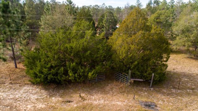 151 Melrose Landing Dr, Hawthorne, FL 32640 (MLS #975800) :: The Hanley Home Team