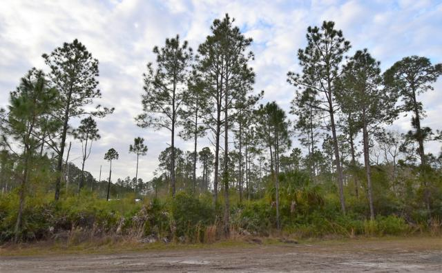 117 Lodge Pole Cir, Georgetown, FL 32139 (MLS #977512) :: Berkshire Hathaway HomeServices Chaplin Williams Realty