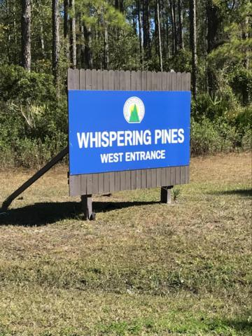 202 Whispering Pines Rd, Georgetown, FL 32139 (MLS #977712) :: Young & Volen | Ponte Vedra Club Realty