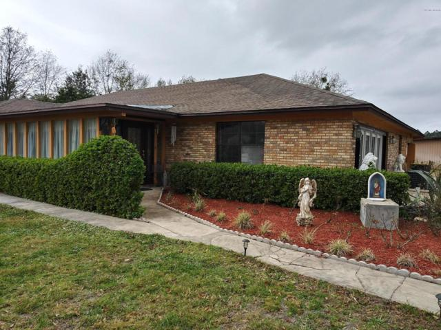 6586 Connie Jean Rd, Jacksonville, FL 32222 (MLS #978927) :: The Hanley Home Team