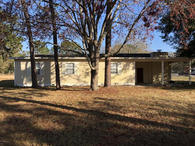 2149 Mallard Rd, Middleburg, FL 32068 (MLS #979096) :: The Hanley Home Team