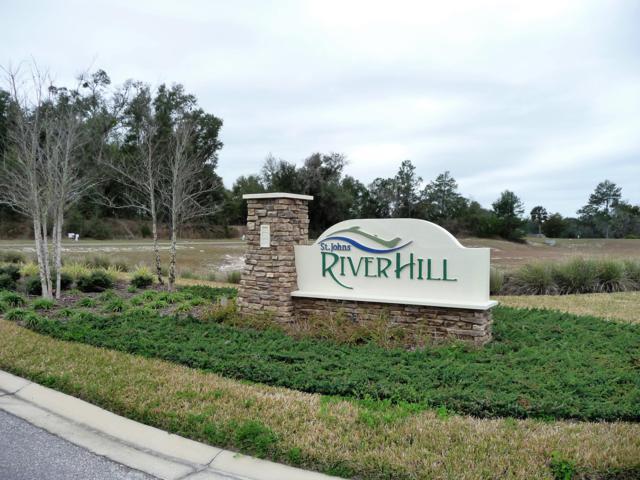 427 River Hill Dr, Welaka, FL 32193 (MLS #979413) :: The Hanley Home Team