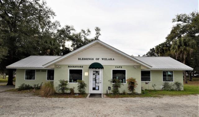 667 3RD Ave, Welaka, FL 32193 (MLS #979789) :: eXp Realty LLC | Kathleen Floryan