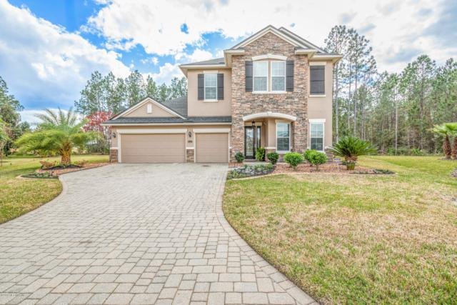 4411 Castle Palm Ct, Orange Park, FL 32065 (MLS #983111) :: The Hanley Home Team