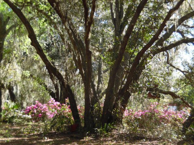 5089 Co Rd 214, Keystone Heights, FL 32656 (MLS #983535) :: Berkshire Hathaway HomeServices Chaplin Williams Realty